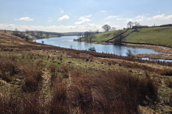 Winterburn Reservoir from the north end